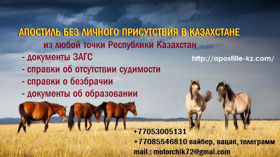 f664302beceee6a45f0c5578f571e42b_big